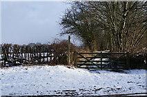 SK2666 : Footpath off Chatsworth Road near Rowsley by Ian S