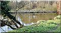 J3268 : The Lagan/Minnowburn confluence, Belfast (February 2015) by Albert Bridge