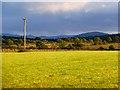 NY4335 : Farmland, Skelton by Andrew Smith