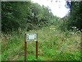 SJ9993 : Herb Garden at Lymefield Centre by Gerald England