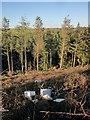 SX2257 : Fly-tipping, Gilhill Wood by Derek Harper