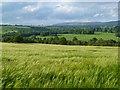 NY5341 : Farmland, Lazonby by Andrew Smith