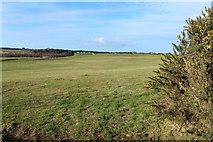 NX1057 : Farmland near Mahaar by Billy McCrorie