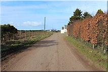 NX1057 : Road passing Mahaar Farm by Billy McCrorie