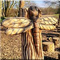 SD5229 : Dragonfly Carving, Higher Penwortham by David Dixon