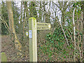 TM2089 : Boudicca Way footpath sign by Adrian S Pye