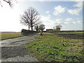 TM2586 : Entrance to North Lodge Farm by Adrian S Pye