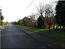 TM4557 : Linden Road & Linden Road Postbox by Adrian Cable