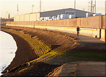 TA1228 : Solitary Riverside Cyclist by Andy Beecroft