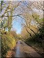 SX2052 : Lane to West Watergate by Derek Harper