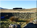NT9919 : View over the sheepfold by Russel Wills