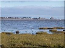 NU0840 : Fenham Flats by Russel Wills