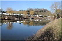 SO8346 : River Severn and Clevelode Caravan Park by Philip Halling