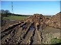 SE4408 : Muck heap, Clayton Common by Christine Johnstone