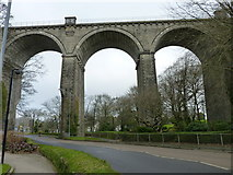 SW8161 : The viaduct, Trenance, Newquay by Ruth Sharville