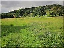 SE0927 : Calderdale Way near Simm Carr Farm by Derek Harper