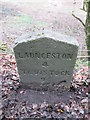 SX3680 : Milestone - Launceston 4 by Adrian Dust