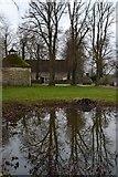 SU1070 : Reflections in farmyard pond at Avebury Manor by David Martin