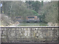 SK8705 : River Gwash emerges from under the railway north of Manton by Robin Stott