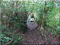 SE0722 : Elland FP01 in a holly tunnel by Humphrey Bolton