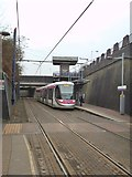 SO9596 : Royal Tram by Gordon Griffiths