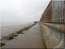 TA1128 : Trans Pennine Trail at Alexandra Dock, Hull by Ian S