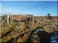 NS3678 : Gate in dry-stone dyke by Lairich Rig
