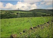 SK0397 : Pasture by the Longdendale Trail by Derek Harper