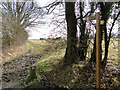 TM2297 : Public bridleway along Green Lane by Adrian S Pye