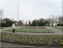 TQ3370 : Crystal Palace Park: flower garden by Stephen Craven