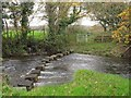 SN6000 : Stepping Stones on the River Lliw by Nigel Davies