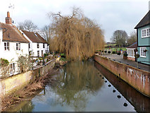 TL8422 : River Blackwater, Coggeshall by Robin Webster
