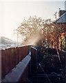 TL4656 : A frosty morning by John Sutton
