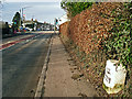 NY3868 : Milestone on the A7, south side of Longtown by Rose and Trev Clough