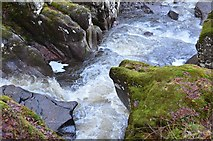 NN6408 : The Keltie Water at Bracklinn Falls by Jim Barton