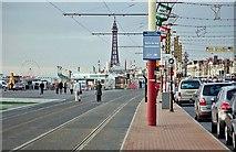 SD3035 : Blackpool Promenade by Mack McLane
