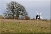 SO9568 : Windmill at Avoncroft by Philip Halling