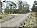 SU3304 : Denny Lodge Inclosure, forestry road junction by Mike Faherty