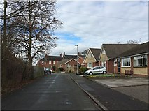 SJ8545 : Newcastle-under-Lyme: Hawkestone Close by Jonathan Hutchins