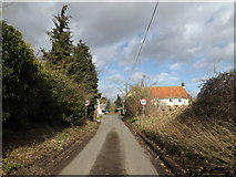 TM1677 : Upper Oakley, Oakley by Adrian Cable