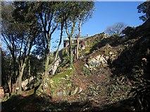 SX9065 : Chapel Hill Pleasure Grounds under restoration by Derek Harper