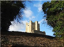 SK5198 : A view of the keep - Conisbrough Castle by Neil Theasby