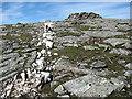NN5139 : Summit area, Meall Ghaordaidh by William Starkey