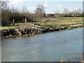 TG2521 : Animal barrier on the River Bure by Adrian S Pye