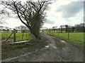 SD5305 : Bench on Spencer's Lane, Gathurst by Gary Rogers