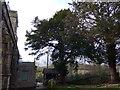 SD4491 : St Mary, Crosthwaite: churchyard (4) by Basher Eyre
