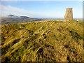 NT0030 : Lamington Hill by Rude Health