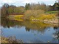 SU8870 : Westmorland Park lake by Alan Hunt