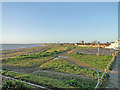 TM5490 : Playing area on Pakefield Cliffs and the beach by Adrian S Pye