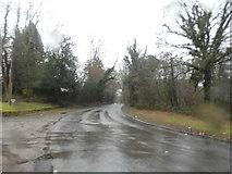 SU8135 : Bend on Standford Lane, Lindford by David Howard